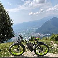 RICH BIT ZDC-022 Bicicleta eléctrica 1000W 48V 17AH para Ciclismo, con Guardabarros