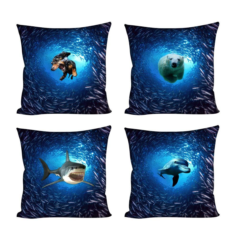 Underwater Animal-1