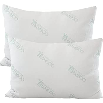 Amazon Com Essence Of Bamboo Derived Rayon Pillows The