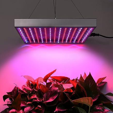 Amzdeal Lampada Crescita Piante 14W Di Luce Rosso E Blu Con 225 LED Per  Promuovere La