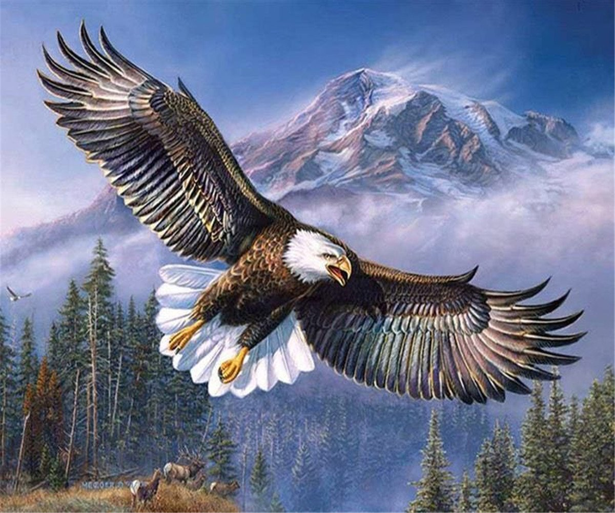 DIY 5D Diamond Painting by Number Kits - Crystal Rhinestone Diamond Embroidery Paintings Pictures Arts Craft for Home Wall Decor, Full Drill - Eagle 12x16inch EOBROMD