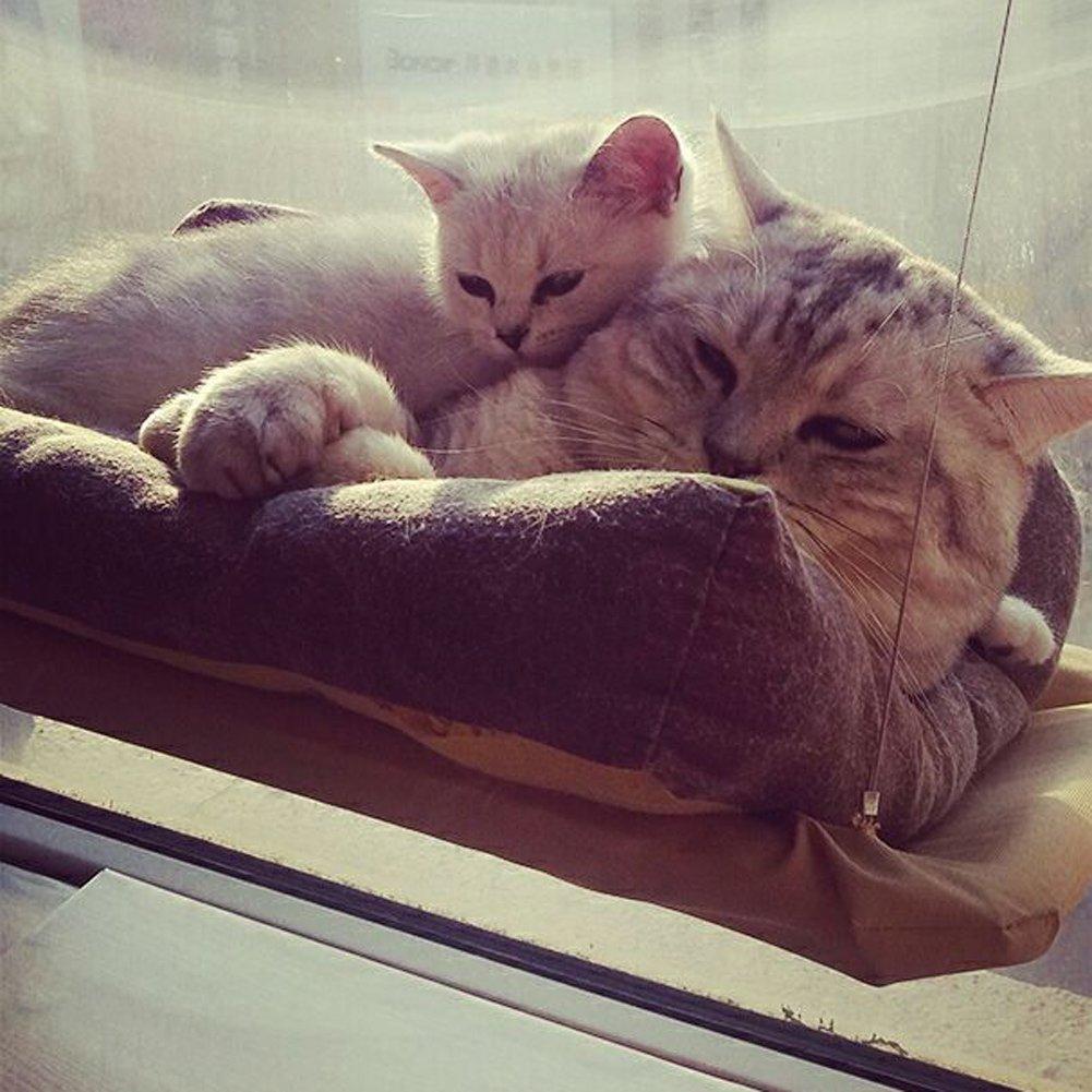 Whitelotous Cat Basking Window Hammock Perch Cushion Bed Hanging Shelf Seat