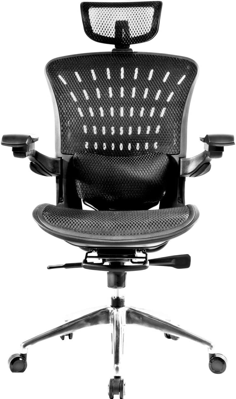 Kelay Ergonomic Office Desk Chair, High Back Computer Mesh Chair- Fully Adjustable Head Rest, Armrest, Lumbar Pillow,Seat, Height,Tilt Tension - Swivel Seat with Back and Posture Support Systems,Black