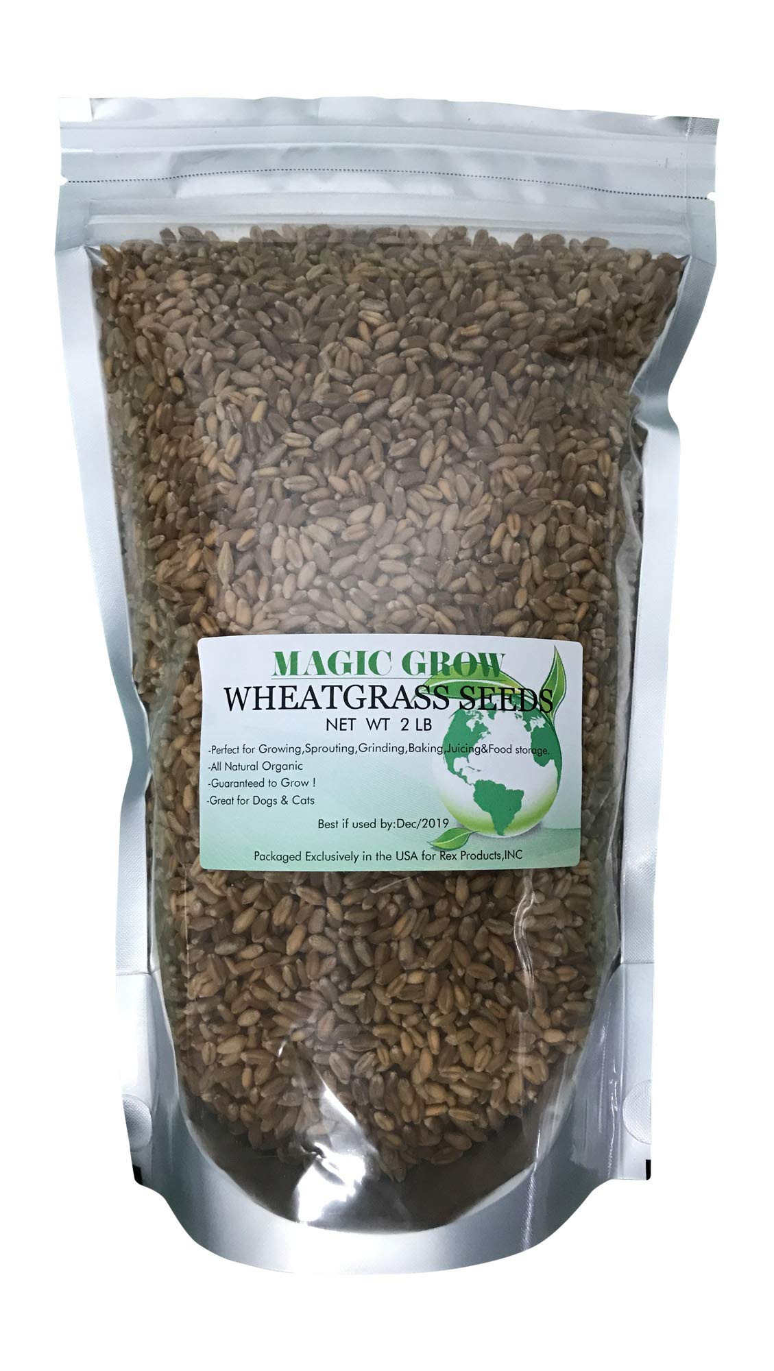 Non-GMO,Magic Grow Premium Wheatgrass Seed,Hard Red Winter (2 LB)