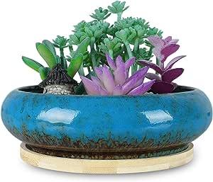 1pce Flower Pot Round Arabesque 10x10x10cm Glazed Ceramic Herbs /& Succulents Pla