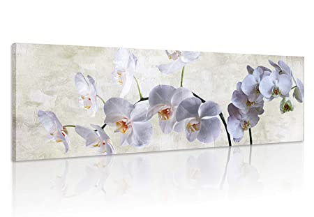 Natural art Moth Orchid Canvas Prints Wall Art with Wooden Frame for Wall Decoration 16×48 Inch