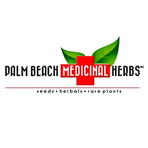 Chai Spice Blend Herbal Tea - Herbal Blends Tea Series by Palm Beach Herbal Tea Company (30 Tea Bags)