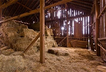 AOFOTO 8x6ft Farmhouse Barn Backdrop Easter Jesus Christ Bales Of Hay Photography Background Newborn Baby Birth