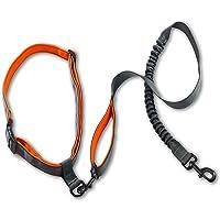 Correa de perro manos libres, correa para correr premium, ligera, reflectante, cinturón antigolpes.