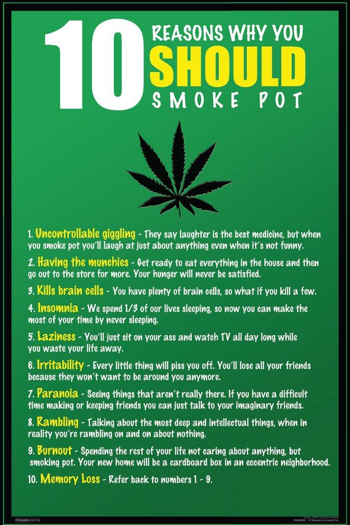 Amazon.com: Pyramid America 10 Reasons Why You Should Smoke Pot Humor  Poster 12x18 inch: Posters & Prints