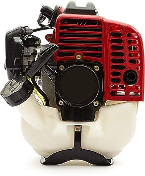 Petrolscooter Arranque Motor 25.4cc 2 Tiempos Jardín Maquinaria: Amazon.es: Coche y moto