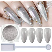 Glitter Powder Nail Powder Diamond Dust Glitter with Magnet Wand Tool for Nails Extra Fine Cat Eye Magnetic Powder Nail…