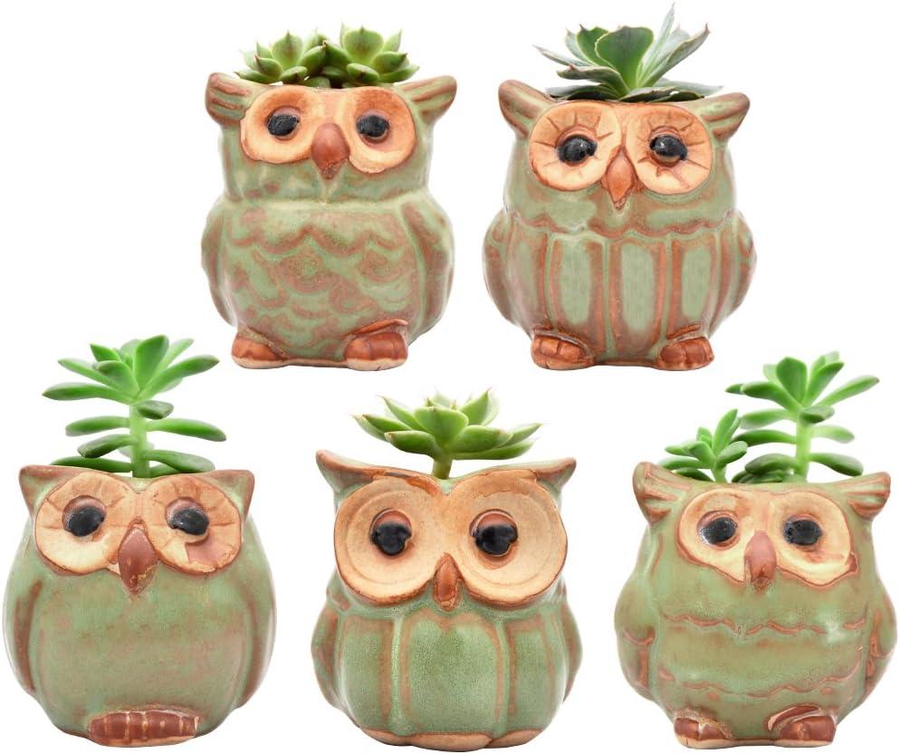Ascrafter 5 Pcs 2.5 inch Ceramic Owl Succulent Planter Pot Succulent Container, Cactus Plant Pot, Mini Flower Pot with Holes