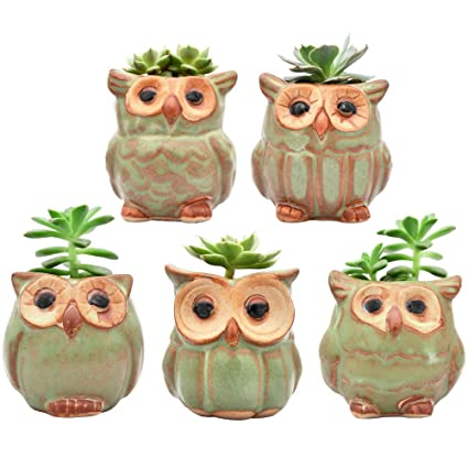 Garden Supplies 2019 Fashion 6pcs Mini Ceramic Owl Flower Pots Small Ceramic Owl Shape Garden Pots For Succulents