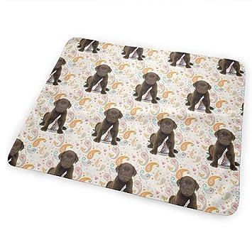 Amazoncom Lxxyz Changing Pad Puppy Chocolate Lab Kisses Portable