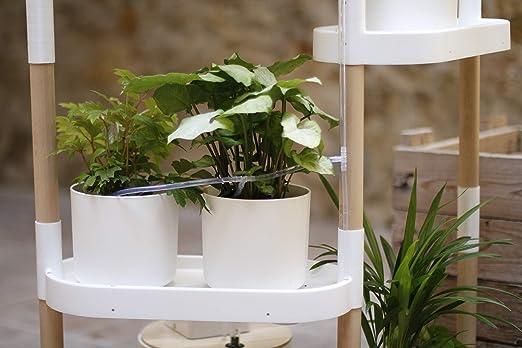Citysens - Estantería para Plantas con riego automático, Blanca, 4 ...