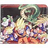 CoolChange Dragon B wallet with pocket for change, theme: B