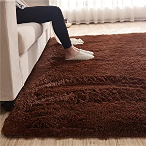 Ultra Soft Velvet Fluffy Shag Area Rug,Modern Indoor Fuzzy Shaggy Rugs,Bedroom Non Slip Carpet,Suitable for Home Decor Coffee 80x160cm/31x63inch