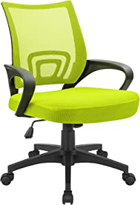Devoko Office Chair Ergonomic Mid Back Swivel Mesh Chair Height Adjustable Lumbar Support Computer Desk Chair with Armrest (Green)