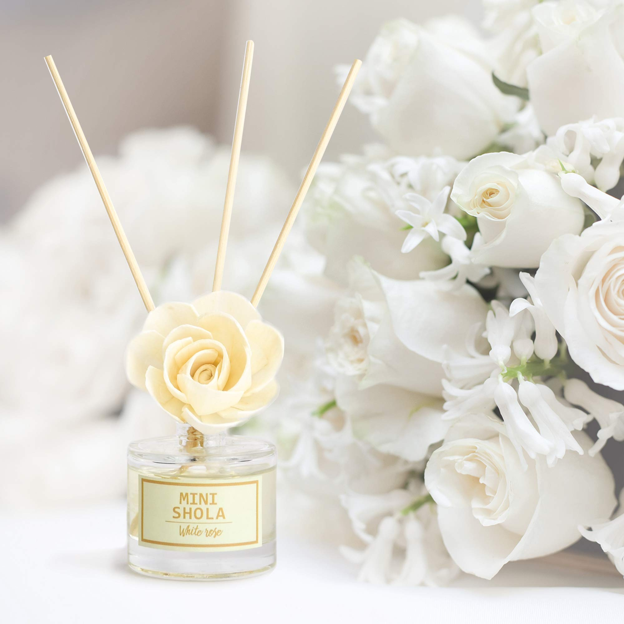 Aronica Mini Floral Diffuser 2 Pack Set - Sola Flower White Rose (40ml) + Muguet (40ml) by Aronica (Image #3)