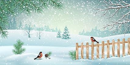 Sfondi Paesaggi Natalizi.6 1 X 3 M Cartoon Paesaggio Invernale Con Recinto Foto Fondale Per Stage Uccelli Su Sfondo Di Neve Floor Paesaggio Natalizio Studio Fotografico Amazon It Elettronica