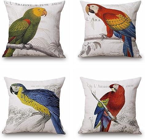 Pack de 4, demissir 3d Parrot tema manta fundas de almohada de cojín casos para sofá 18 x 18 pulgadas: Amazon.es: Hogar