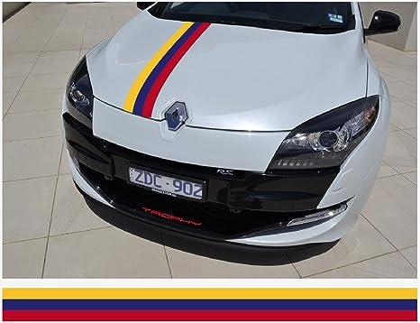 Amazon.com: Renault Racing Calcomanía de rayas racing ...