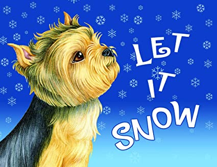 Amazoncom Best Of Breed Yorkie Puppy Cut Let It Snow Fleece