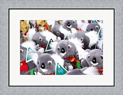 Amazon.com: Fluffy Koalas and Kangaroos, Queen Victoria Market ...