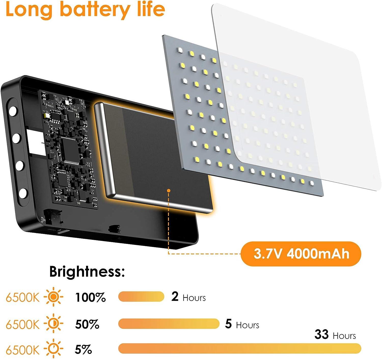 Pentax Panasonic Sony usw. Dimmbares 96-LED-Videolicht 5600K im ...