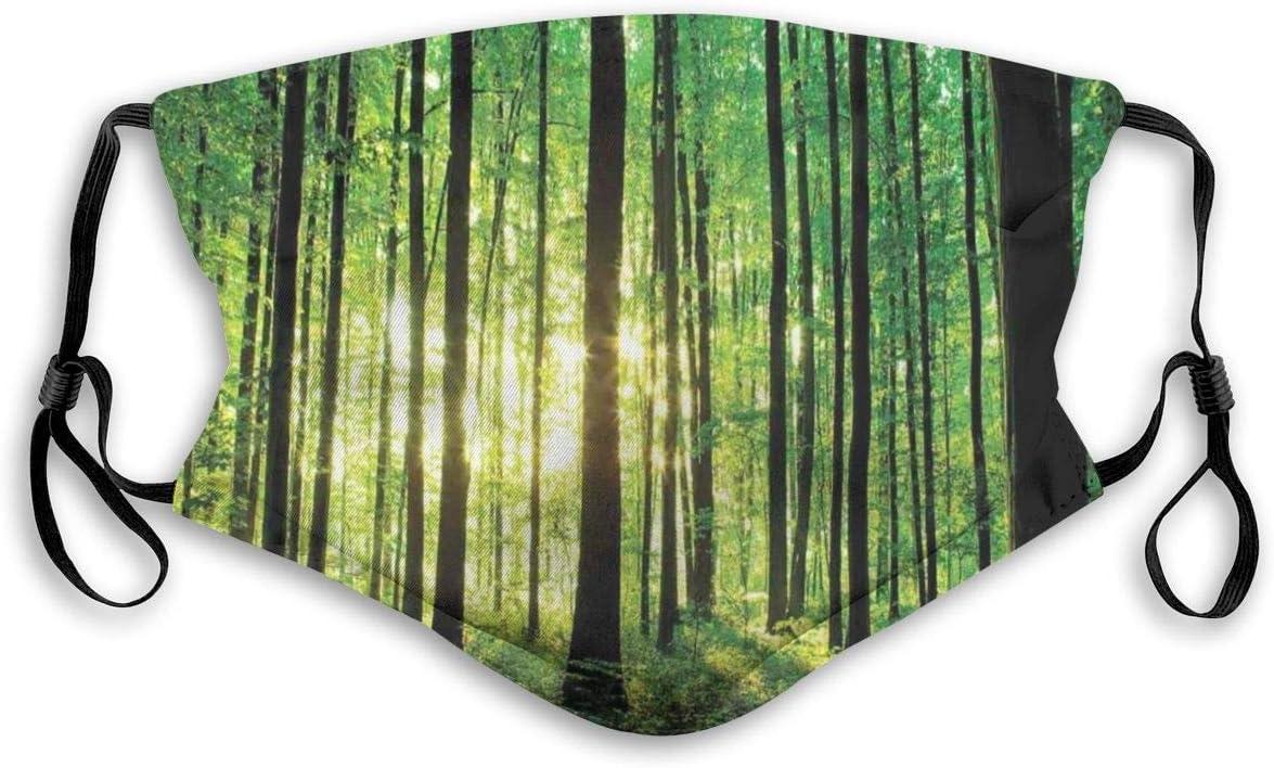 YYTT8 Gesichtsbedeckung Mundschutz B/äume Wald Bild von Indoor Sonnenlicht als Hintergrund Holzboden dekorative Kunst