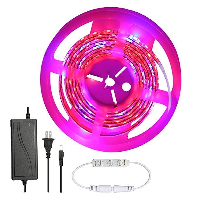 Review Grow LED Lights,GLIME 5050