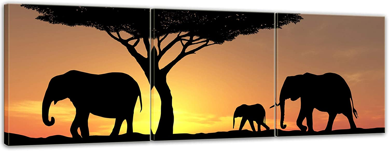 Bilderdepot24 Cuadros en Lienzo Familia Elefantes - 120 x 40 cm 3 ...
