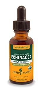 Herb Pharm Certified Organic Echinacea Root Liquid Extract for Immune System Support, Alcohol-Free Glycerite, 1 Ounce