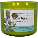 Stress Relief Aromatherapy Candles Eucalyptus Spearmint Scented Candle   16 Oz Soy Candles for Home   Decorative Candles Long