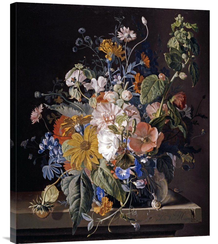 Global Galerie Budget gcs-265042–76,2–360,7 cm Jan van Huysum Mohn malve Morning Glory Daisies Galerie Wrap Giclée-Kunstdruck auf Leinwand Art Wand B01K1P9BUS   Elegant Und Würdevoll