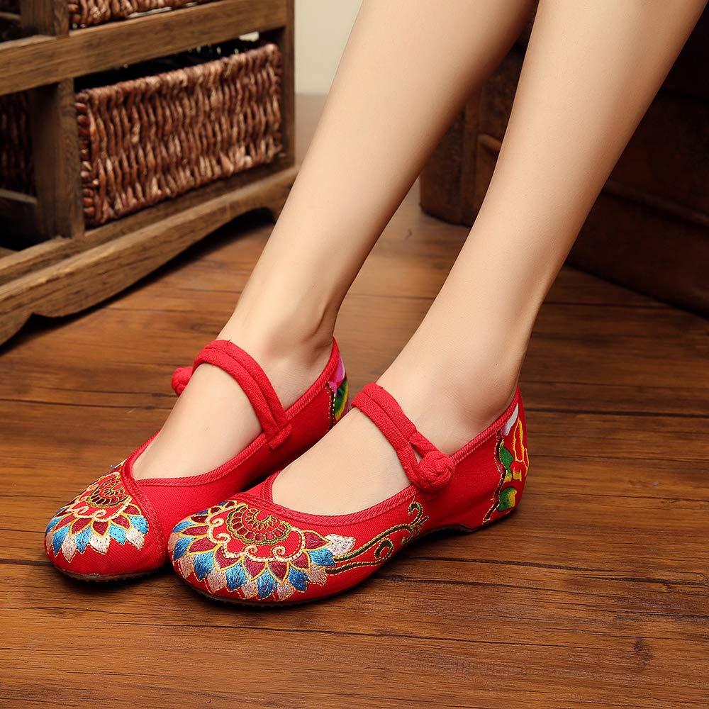 SONSYON Mary Jane Chaussures Femmes Ventilation Toile Vintage /à Broderies Qipao Hanfu Danse Shoes