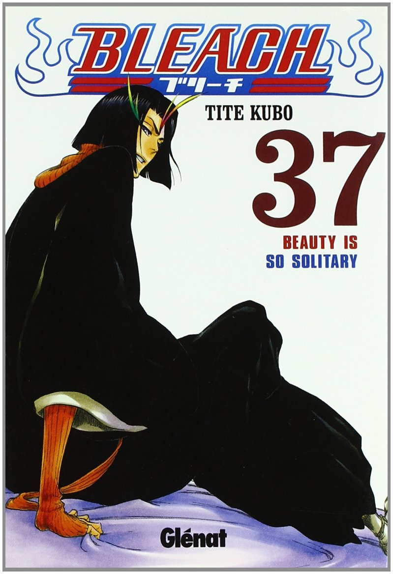 Bleach 37 (Shonen Manga)