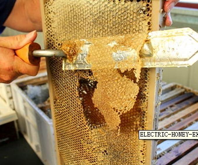 Yosoo Extractor de miel de abeja accesorios para herramientas de miner/ía de 220 V fue llevado a los apicultores de miel