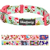 Blueberry Pet Spring Floral Prints Collar Collection, 11 Patterns Polyester Dog Collars & 6 Patterns Seat Belts, 8 Patterns Personalized Collars, Matching Leash Harness Available Separately