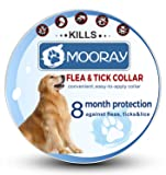 Flea and Tick Collar Prevention for Dogs & Cats