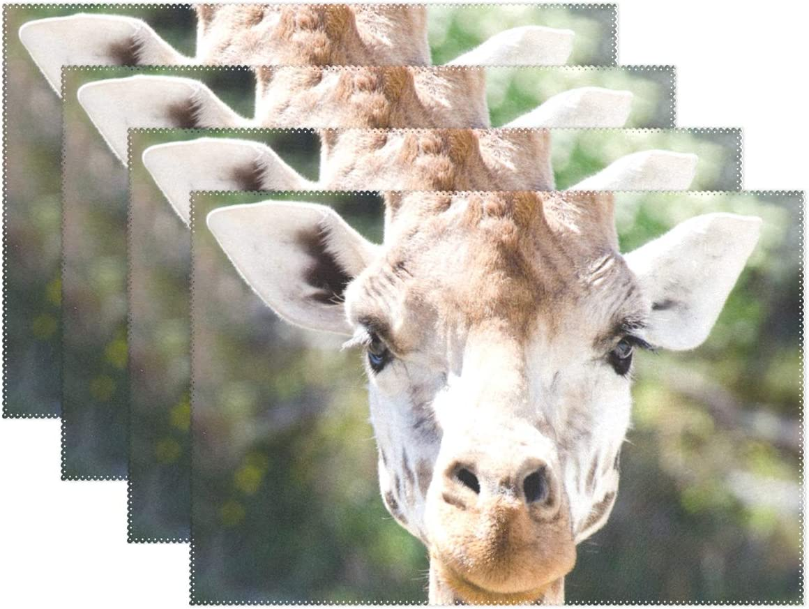 Amazon Com Top Carpenter 4pcs Close Up Of Giraffe Face Placemat 12x18in Washable Heat Crease Resistant Printed Place Mat For Kitchen Dinner Table By Home Kitchen