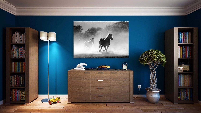 G1   Cuadro Caballos Blanco y Negro   Fabricado en PVC Forex 5 MM   Medidas 100 cm x 70 cm   Fácil colocación   Diseño Elegante   Impresión Digital (1 Unidad)