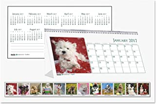 product image for HOD3659 - Recycled Puppy Photos Desk Tent Monthly Calendar