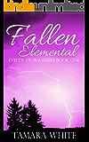 Fallen Elemental (Evelyn Storm Series Book 1)