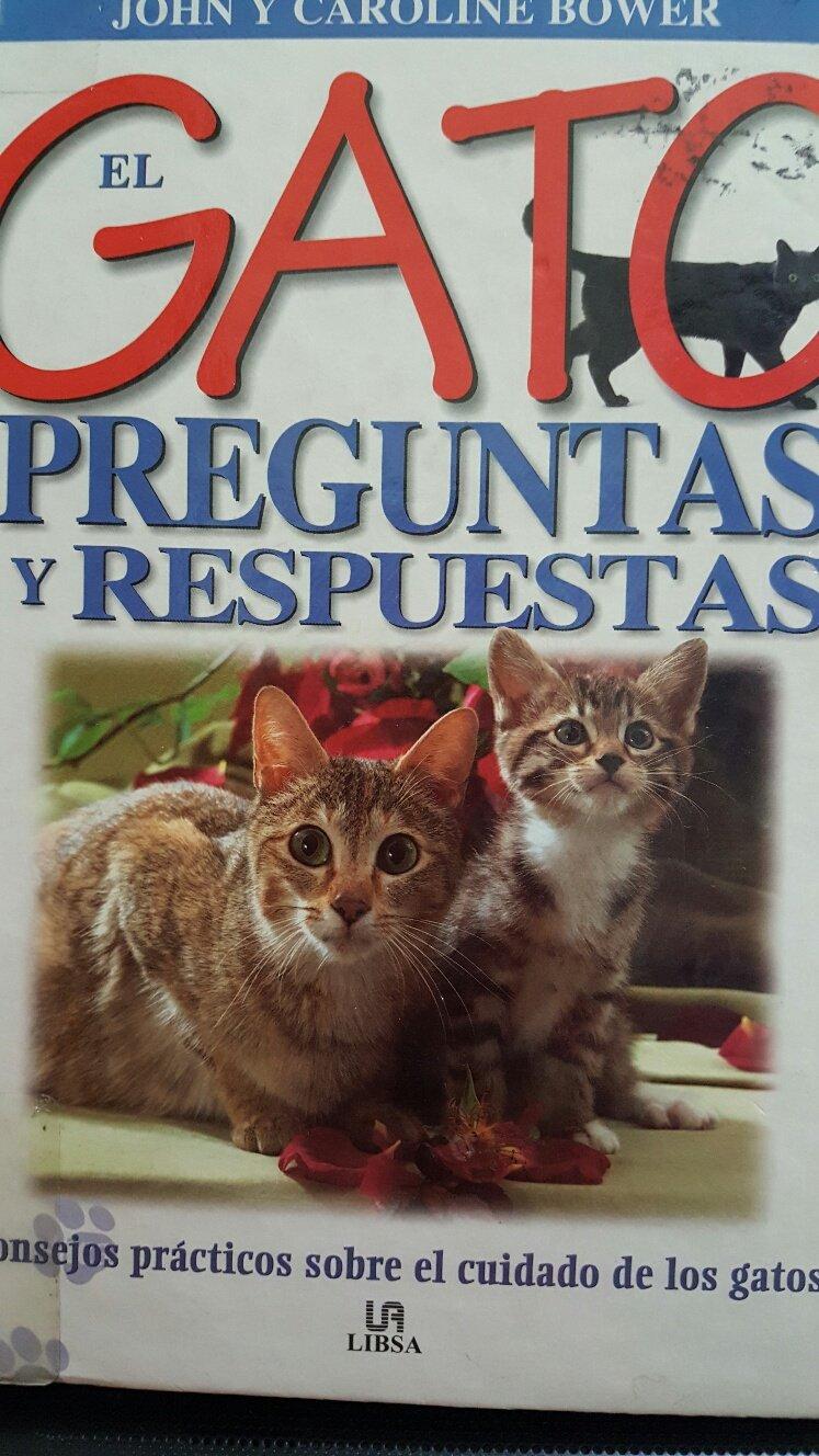 Gato, El: Preguntas Y Respuestas (Spanish Edition) (Spanish) Hardcover – August 1, 2000