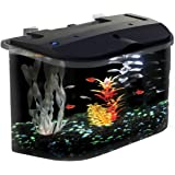 Panaview Aquarium Kit with LED Lighting and Power Filter, 5-Gallon