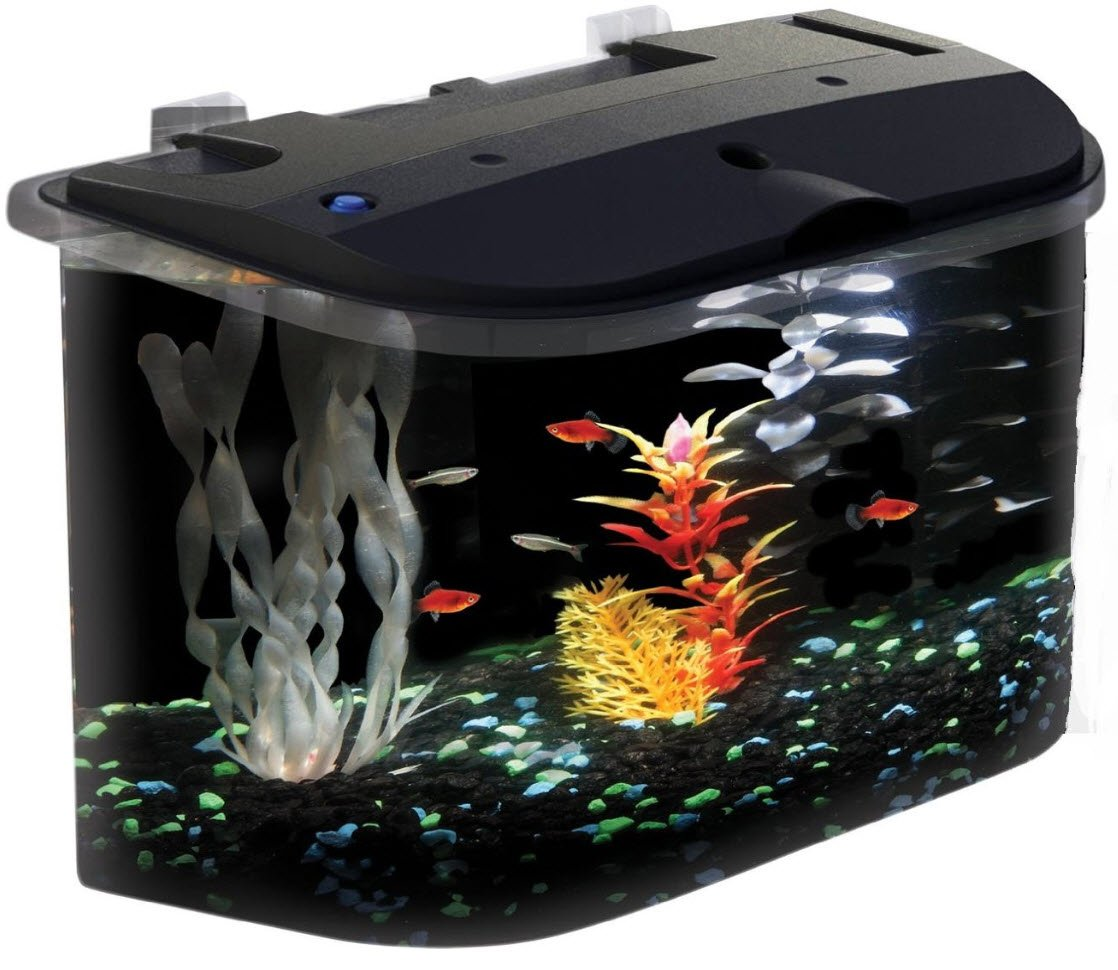 Aquarium fish tank starter kit - Amazon Com Api Panaview Aquarium Kit With Led Lighting And Power Filter 5 Gallon Pet Supplies