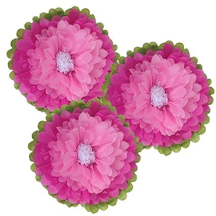 Amazon Com Just Artifacts Tissue Paper Flower Pom Poms 10inch Set