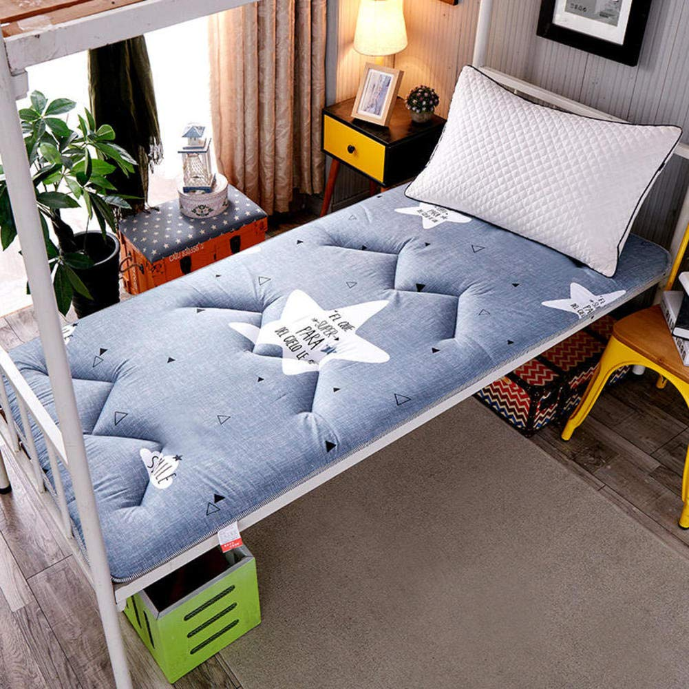 E 120x200cm(47x79inch) WYMNAME Quilted Printing Tatami Floor Mat, Japanese Floor Futon Mattress Foldable Roll Up Mattress Topper for Home Bed Student Dormitory-c 120x200cm(47x79inch)
